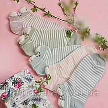 Полосатые женские носки с ушками