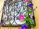 Производство решёток металлических изготовление на окна и балконы, фото 5