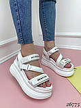 Женские босоножки Sport на липучках,платформа 8 см, белые, черные, красные, бежевые, желтые, фото 3