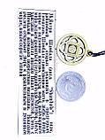 Талисман № 38 Шамбала - центр энергии, ключ к параллельным мирам, фото 3