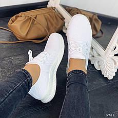 Кросівки жіночі білі. Кросівки жіночі з текстилю. Кеди жіночі. Мокасини жіночі. Кріпери жіночі, фото 3