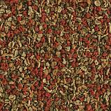 TetraMin Granules (10 л/ 4,2кг), фото 2