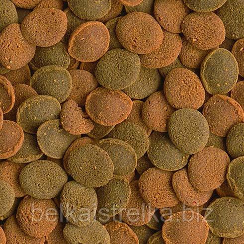 Tetra Wafer Mix таблетки для донных рыб (500 г) развес