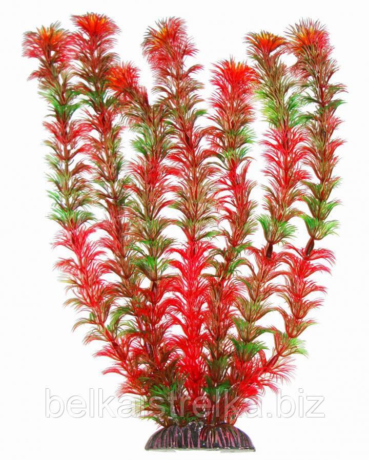Штучне акваріумне рослина, 34 див.