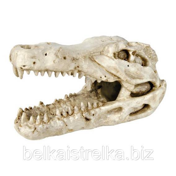 Декорация для аквариума Trixie Череп крокодила, 14 см.
