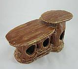 Кераміка для акваріума Черепашатник, 21х13 див., фото 3