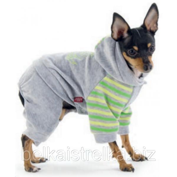 Костюм Pet Fashion Спринт для собак XS-2