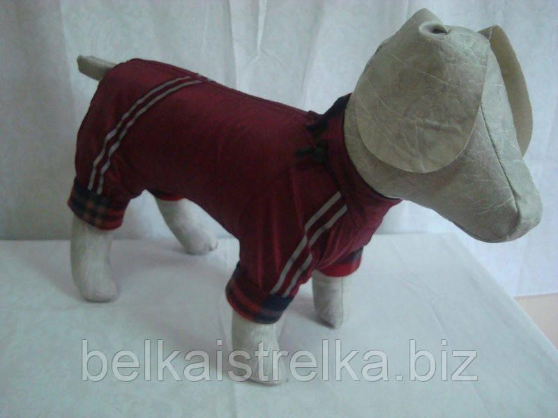 Комбинезон для собак Флис №1 пекинес 29х46 (болонья, флис)