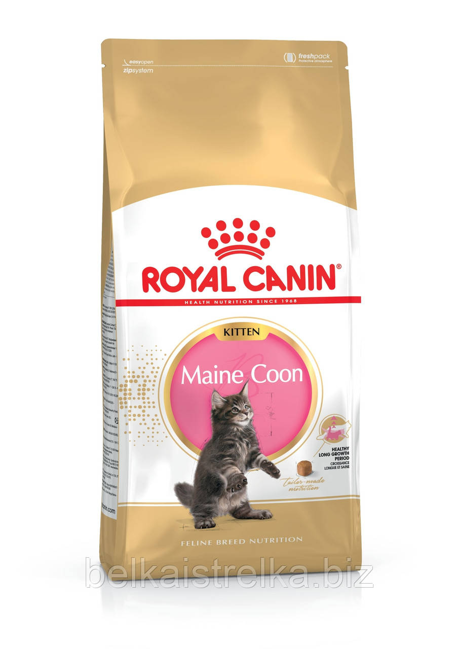 Royal Canin Maine Coon Kitten - корм для котят породы мейн-кун от 3 до 15 месяцев 2 кг