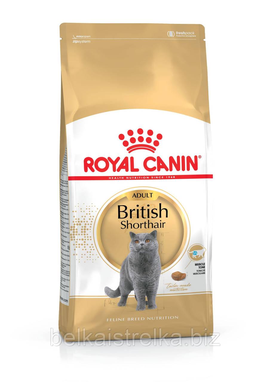 Royal Canin British Shorthair Adult - корм для кошек британской короткошерстной породы старше 12 месяцев 10 кг