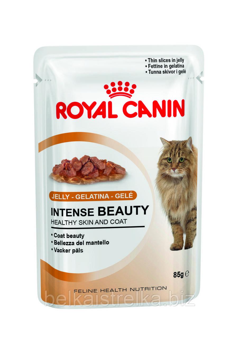 Royal Canin Intense Beauty в желе - влажный корм для здоровой кожи и красивой шерсти кошек от 1 года 0,085 кг