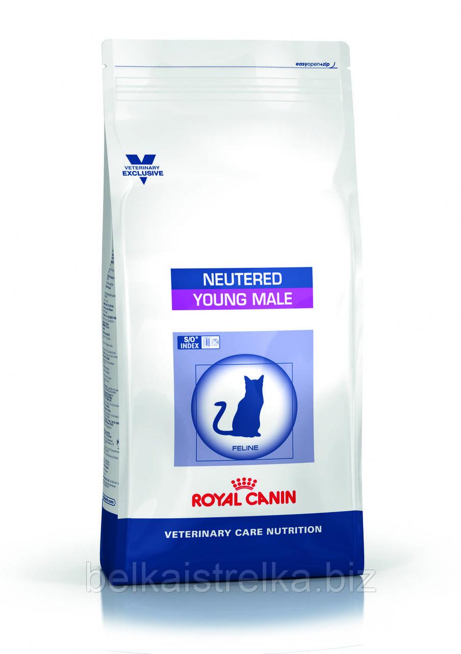 Royal Canin Neutered Young Male S/O - корм для кастрированных котов до 7 лет 1,5 кг