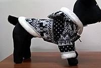 Толстовка для собак Зима той-терьер (25х28)