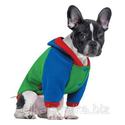 Толстовка Pet Fashion Курт для собак, XS