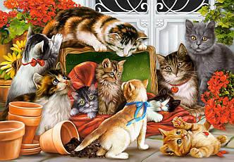 Пазлы на 1500 элементов Котята (кошки), (Castorland, Польша)