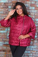 Курточка больших размеров арт. 524 батал бордо / марсала
