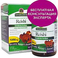 Nature's Answer, Рейши, 500 мг, 90 вегетарианских капсул, официальный сайт