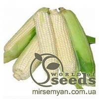 """Семена сладкой, сахарной кукурузы """"Медунка F1"""" 1 кг/ белозерновая сладкая/ насіння солодкой цукровой кукурудзи"""