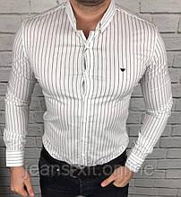 Рубашка Чол. 54(р) білий 9038 Armani Туреччина Весна-C