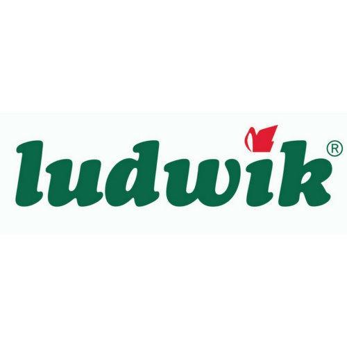 Ludwik