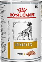 Royal Canin Urinary S/O Canine влажный, 410 гр