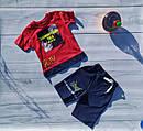Комплект коттоновый для мальчиков: футболка шорты Размеры 3- 7 лет Турция, фото 2