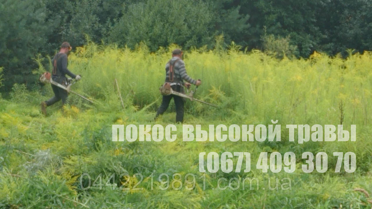Скошування високої трави