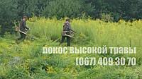 Скошування високої трави, фото 1