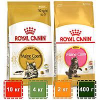 Корм для кошенят і кішок породи Мейн кун   Royal Canin Maine Coon Kitten & Adult   10 кг   4 кг   2 кг   400 г