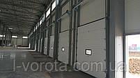 Секционные ворота с окном для склада DoorHan ш3000мм, в3000мм (цвет белый, вертикальный подьем), фото 4