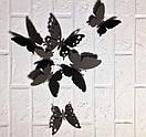 Набор ажурных 3д бабочек Лили, объемные бабочки из картона или бумаги, метелики 3d, фото 3