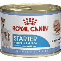 Royal Canin Starter Mousse 195 г для cук и щенков до 2 месяцев