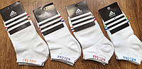 "Женские короткие носки в стиле""Adidas"",турецкий оригинал 36-41, фото 1"
