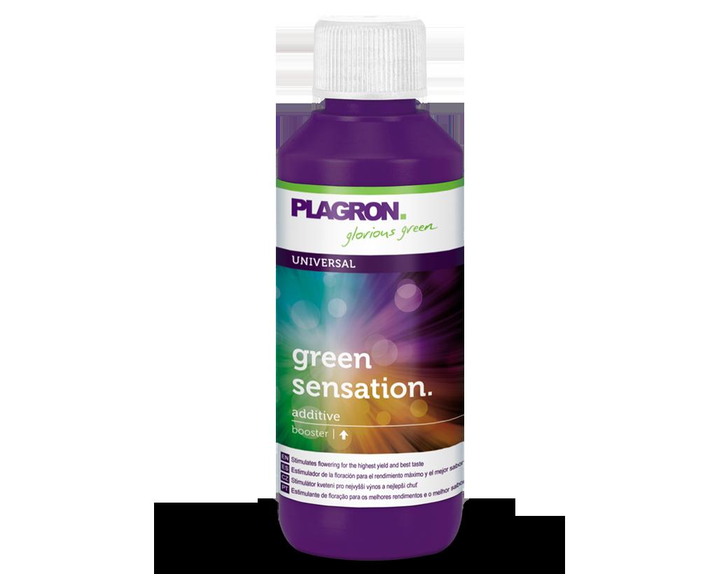 Стимулятор цветения Plagron Green Sensation 100 ml