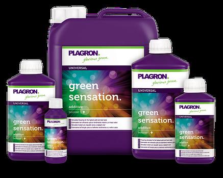 Стимулятор цветения Plagron Green Sensation 100 ml, фото 2