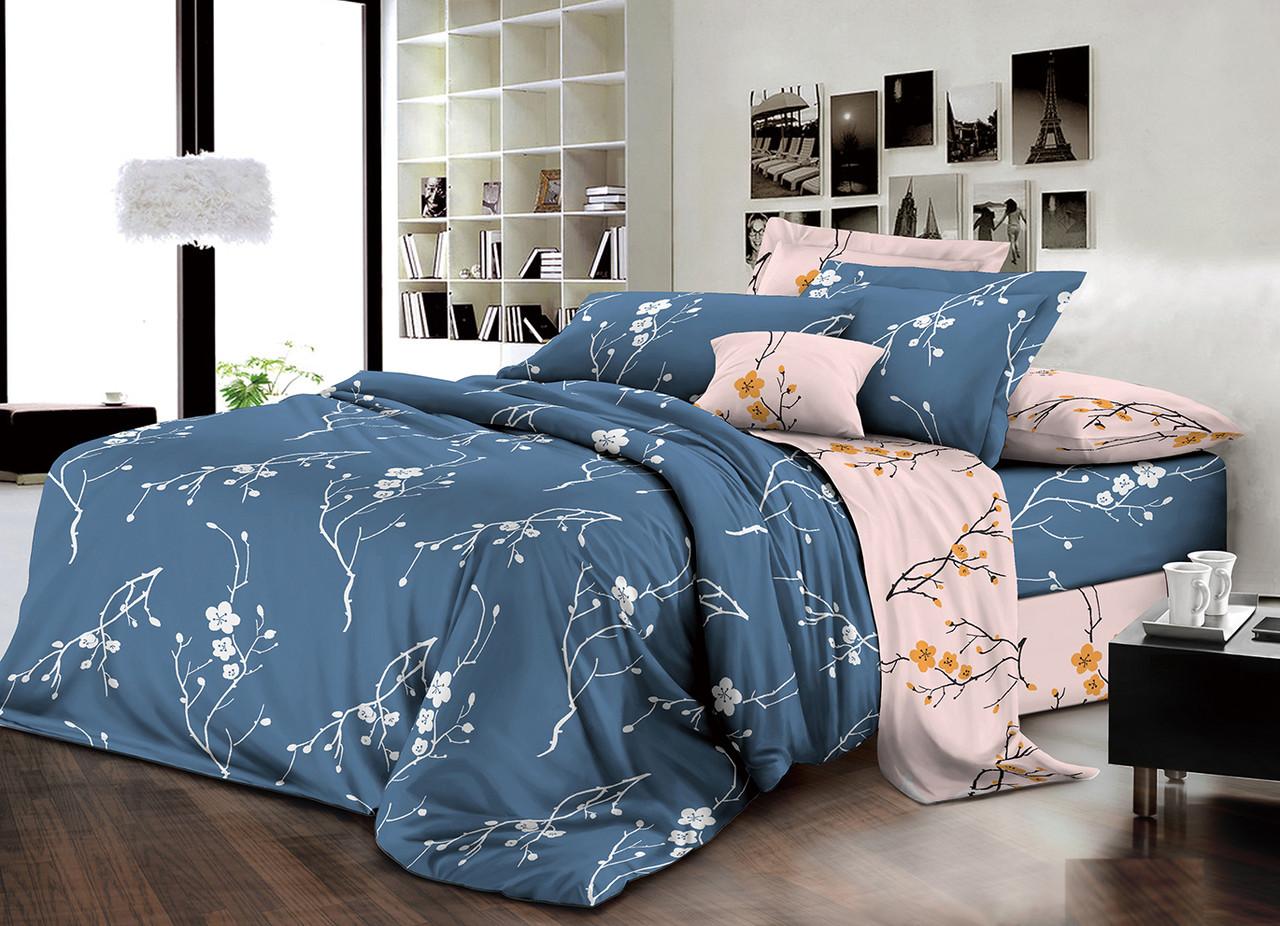 Двуспальный комплект постельного белья евро 200*220 хлопок  (14321) TM KRISPOL Украина