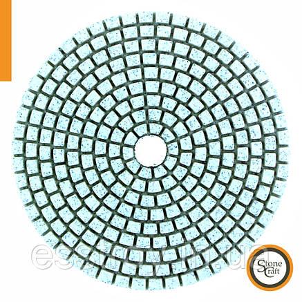 №300, d100 mm. кл А, Универсальный алмазный шлифовальный круг, фото 2