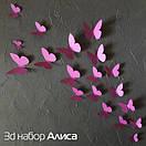 Набор 3д бабочек для декора Алиса, объемные бабочки из картона на скотче, метелики 3d, фото 3