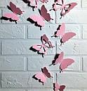 Набор 3д бабочек для декора Бонни, объемные бабочки из картона на скотче, метелики 3d, фото 2