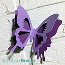 Набор 3д бабочек для декора Бонни, объемные бабочки из картона на скотче, метелики 3d, фото 7
