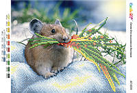 """А4 """"Польова мишка (част. виш.)"""" схема для частичной вышивки бисером"""