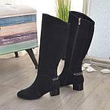 Сапоги черные женские замшевые на устойчивом каблуке, декорированы цепью, фото 3