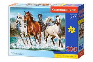 Пазлы Castorland Лошади 200 элементов
