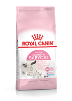 Royal Canin Mother and Babycat корм для беременных, кормящих кошек и котят до 4 месяцев, 400 г