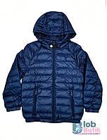 Куртка демисезонная синяя для мальчика, фото 1