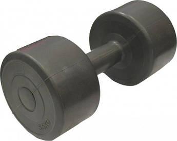 Гантель пластик EVROTOP 5,5кг (1шт), серая