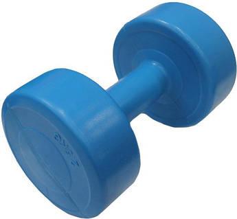 Гантель пластик EVROTOP 2,5кг синяя,  SS-LKDB-601-2.5 (Гантель пластик EVROTOP 2,5кг (1шт)  синяя,  SS-LKDB-601-2.5)