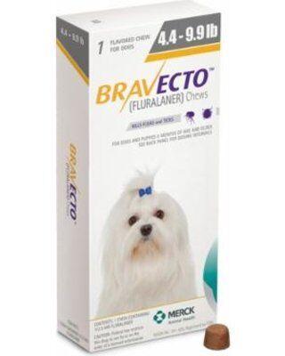 Bravecto (бравекто) таблетки от блох и клещей для собак от 2 до 4,5 кг, 112,5 мг, 1 шт.