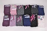 Колготки детские для девочек FENA разноцветные с Единорогом FEK1033-1, фото 2