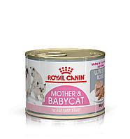 Влажный корм Royal Canin Babycat Instinctive конс. для котят до 4 месяцев паштет 195 г